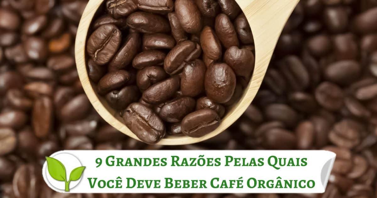 9 Grandes Razões Pelas Quais Você Deve Beber Café Orgânico
