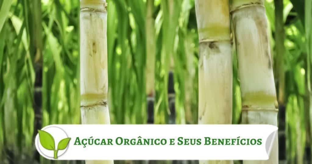 Açúcar Orgânico e Seus Benefícios
