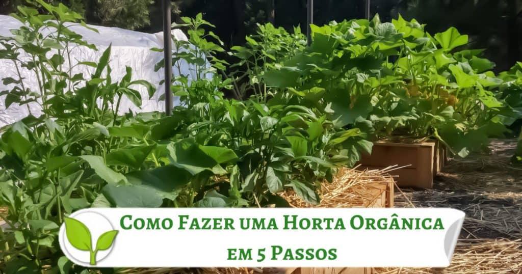 Como Fazer uma Horta Orgânica em 5 Passos