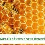 Mel Orgânico e Seus Benefícios