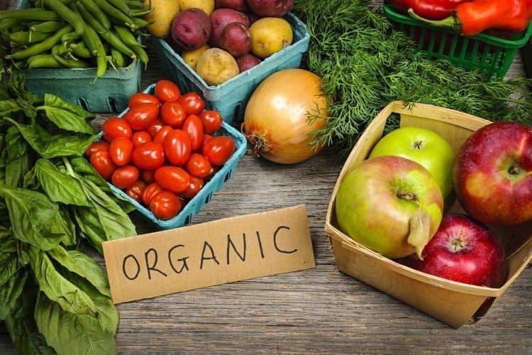 Alimentos Orgânicos e Agrotóxicos