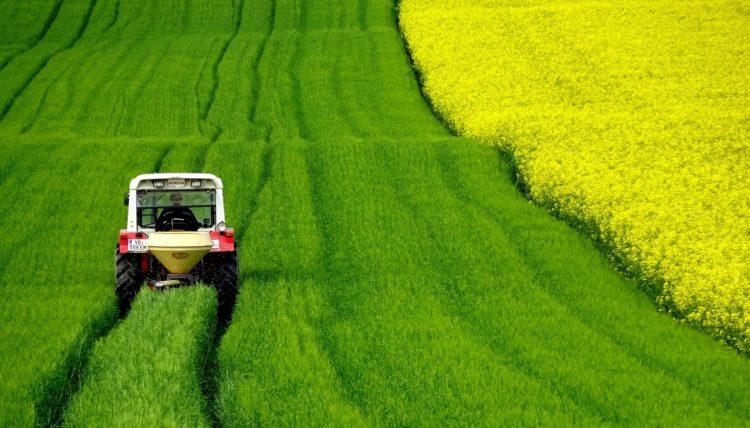 Agrotóxicos nos alimentos