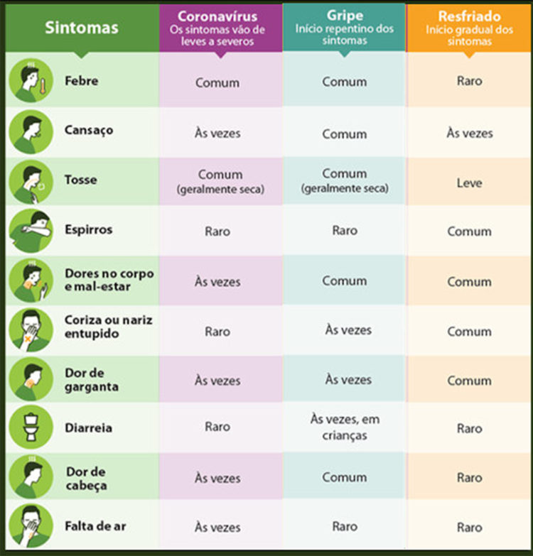 Frutas que previnem a gripe