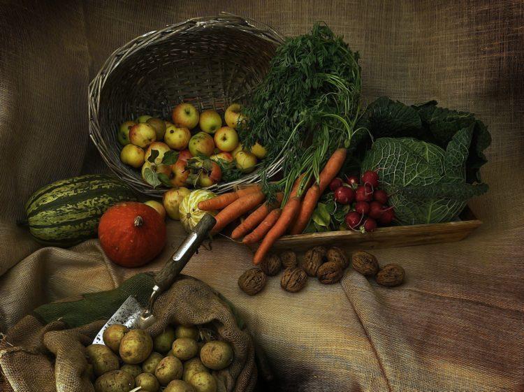 Uso dos agrotóxicos nos alimentos